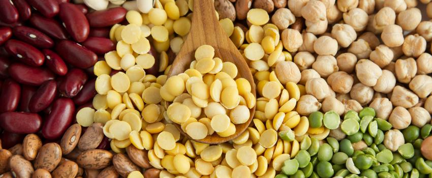 7 excelentes fontes de proteína para substituir a carne