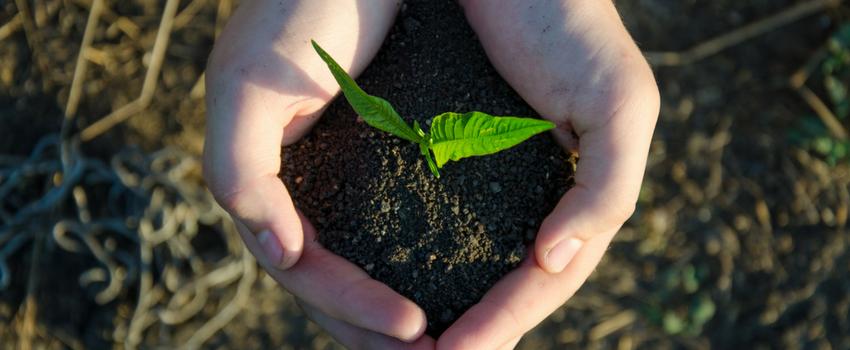 Saiba quais são os benefícios de buscar o crescimento espiritual